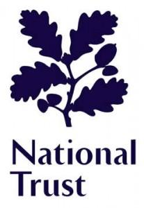 NT Logo 2
